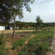 Roadside Land For Sale at Prampram